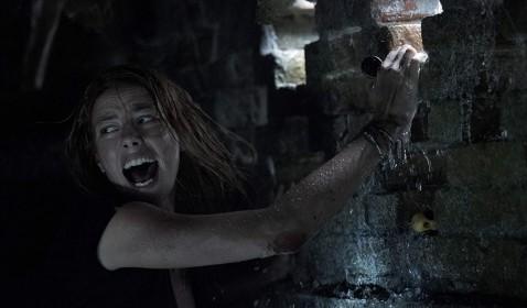 Review Crawl: Kisah Tentang Bencana Alam dan Aligator